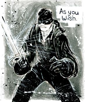 Dread Pirate Roberts by mrjaymyers