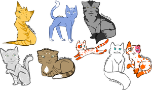Warrior cats 1 by XxHoneywingxX