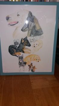 My dog painting by cargirl9