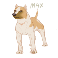 Another Max Concept by Soldjagurl
