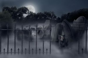 Stephen King's Pet Cemetery by nightgraue