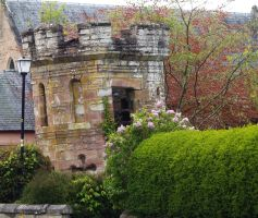Remains of Dingwall castle by piglet365