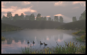 Morning on the Pond by jbjdesigns