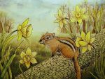 Daffodil Chipmunk by MichaelKensinger