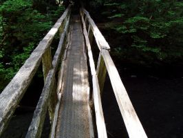 Marymere Falls Bridge Stock by Stoked-Stock