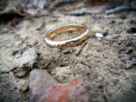 One Ring to Rule Them All by NovumAurora