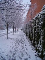 In the lane snow is by Reezi