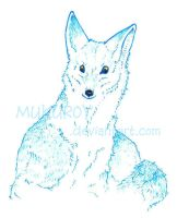 Blue Coyote by MukuroY