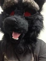 Newest Fursuit Head by DarkeWolfKnight