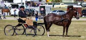 STOCK GC Show 2013-47 by fillyrox