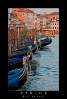Venice 2011 .25 by Aderet