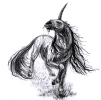 Unicorn by Ankhes-Nur