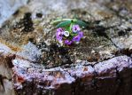 Wall flower by naked-in-the-rain