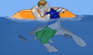 Dolphin Accident by Luckery