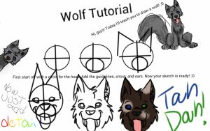 Wolf Tutorial by WolfGirl952