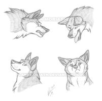 Headshot Expressions: Rusame by FlannMoriath