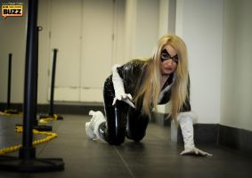 Black Cat (Felicia Hardy) - Marvel Universe by Paper-Cube