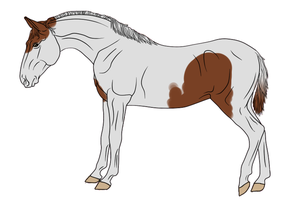 RR Kennels Lusitano Design 6 by DragonicWhispers