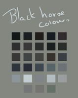 Black Horse Palette by Lone-Onyx-Stardust