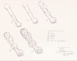 Arm Muscle Sketching... by ACommonMisconception