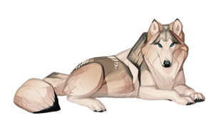 Wolf by CoyoteMange