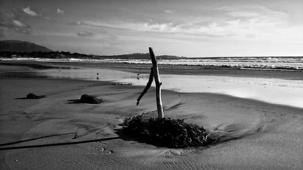 The lonely stick. by sethses1