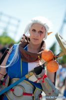 Impa - Hyrule Warriors by rocknroler