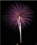 Canfield Firework in Pink by WDWParksGal
