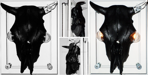 Mounted Cow Skull by themindisright