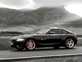 BMW Z4 by RiDDiKK