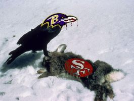 49ers Raven's Victims by kXn
