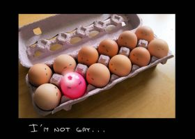 funny eggs by maryduran