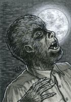 Wolf Man sketch card by silentsketcher