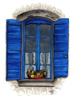 Provence Shutters by TeriStearns
