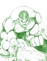 The Incredible Hulk by DW-DeathWisH