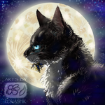 Hawkfrost . Warriors by Romashik-arts