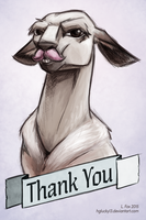 A Majorly Overdue Thank You by hglucky13