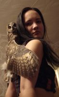 With owl6 by SariennStock