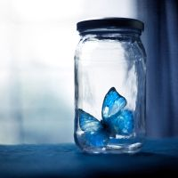 A blue dream captured by arefin03