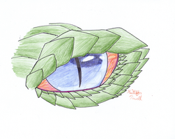 The Dragon's Eye by DrUmMeR-GuY
