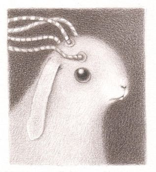 another bunny 4 by reneefrench