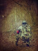 Airsoft 07022016a by Tenel
