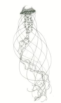 Meduse by My-anh