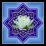 Water Lily Mandala In Blue by MaganEdinger