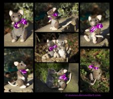 FOR SALE Plushie: Viola the Mouse Teddy by Avanii