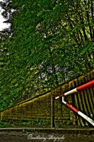 The barrier HDR by xMAXIx