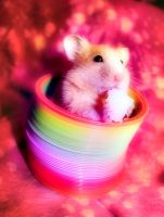 lovely by Melzinluv