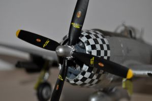 P-47D Finished 5 by SindreAHN