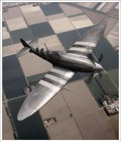 Spitfire MkIX over Holland by robfleet