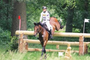 3DE Ingrid Klimke Hale Bob Cross Country 14 by LuDa-Stock